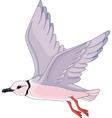 Ross Gull vector image