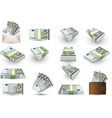 full set of five euros banknotes vector image