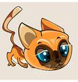 Cartoon cute beautiful cat vector image