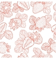 drawing pattern of strawberries vector image