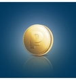 Gold coin with ruble sign on blue background vector image
