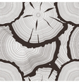tree rings set concept of saw cut tree trunk vector image