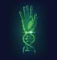dna hand vector image