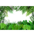 jungle on white background vector image