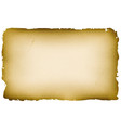 old textured parchment background vector image