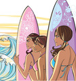 3 ladies with surf boards vector image