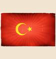 vintage turkey flag poster background vector image