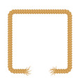 torn rope frame vector image