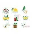 Vegetarian food symbols vector image vector image