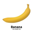 Realistic banana fruit vector image