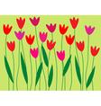 spring flower border vector image vector image