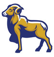ram goat mascot vector image