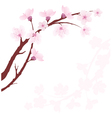 cherry branch vector image vector image