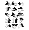 Hand shadow animals vector image