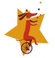 Circus dog juggler character vector image