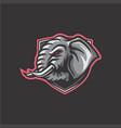 elephant mascot vector image