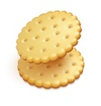 crisp cookies snacks isolated vector image