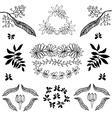 Hand drawn set of plants flowers vector image vector image