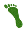 Footprint of grass vector image