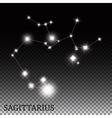 Sagittarius Zodiac Sign of the Beautiful Bright vector image vector image