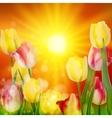 Floral Background Sunset Landscape EPS 10 vector image