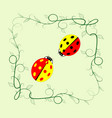 ladybird in frame sign vector image