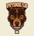 Pitbull Head Macot vector image