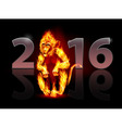Year of fire monkey vector image
