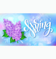 happy hello spring poster with lettering vector image