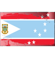 Tuvalu national flag vector image vector image