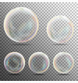 realistic soap bubbles on transparent background vector image