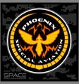 space batlmilitary chevron vector image