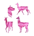watercolor silhouettes of a lama vector image