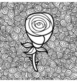 Doodle pattern with black and white flower image vector image