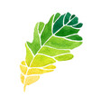 watercolor style of leaf vector image