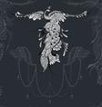 Bird Phoenix lace decor vector image