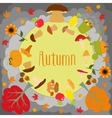 Autumn round with cute leaves mushrooms pumpkin vector image