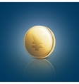 Gold coin with yen sign on blue background vector image