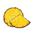 unpeeled round and wedge cut pineapple slices vector image