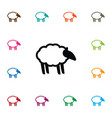 isolated sheep icon ewe element can be vector image