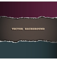 border of torn paper vector image