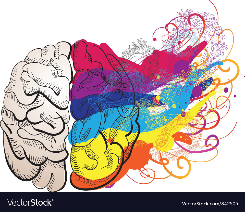 Creativity concept  brain vector