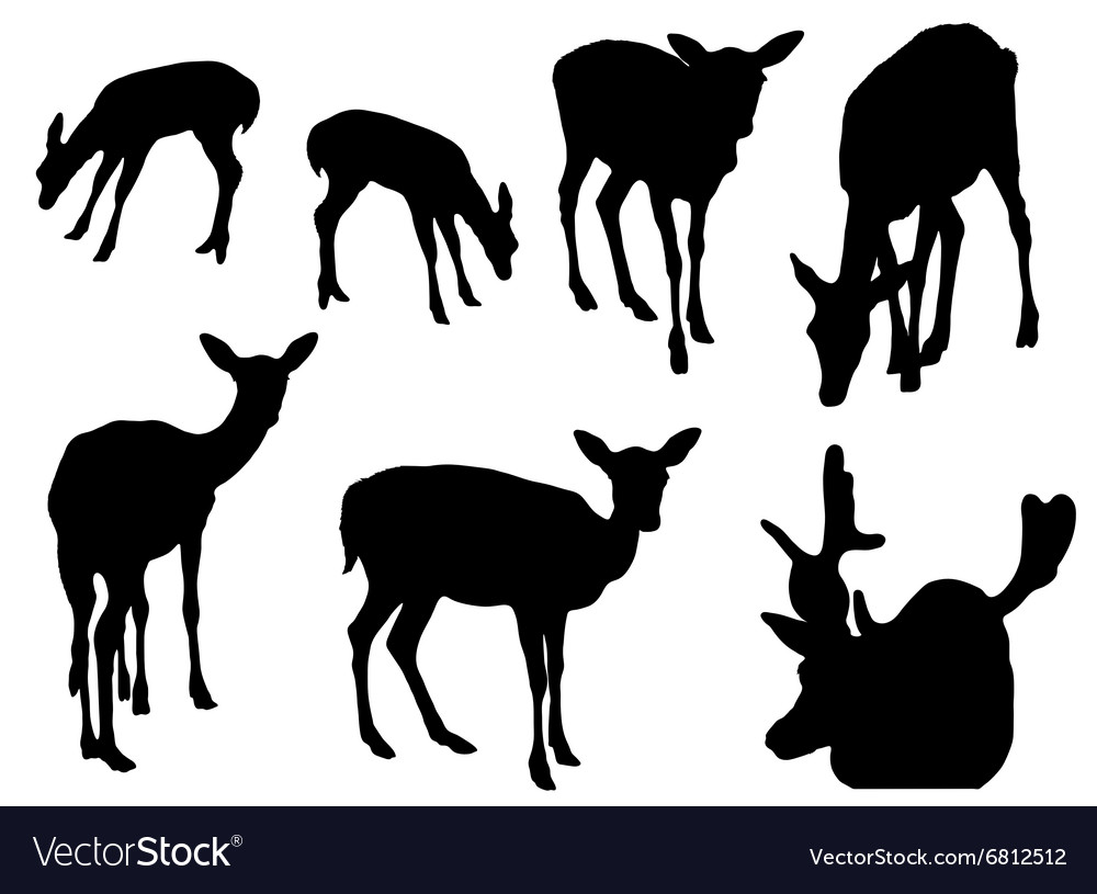 Collection of silhouettes of deer vector