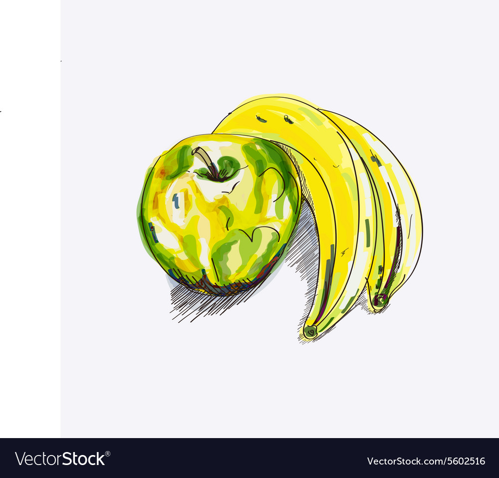 Sketch apple and banana vector