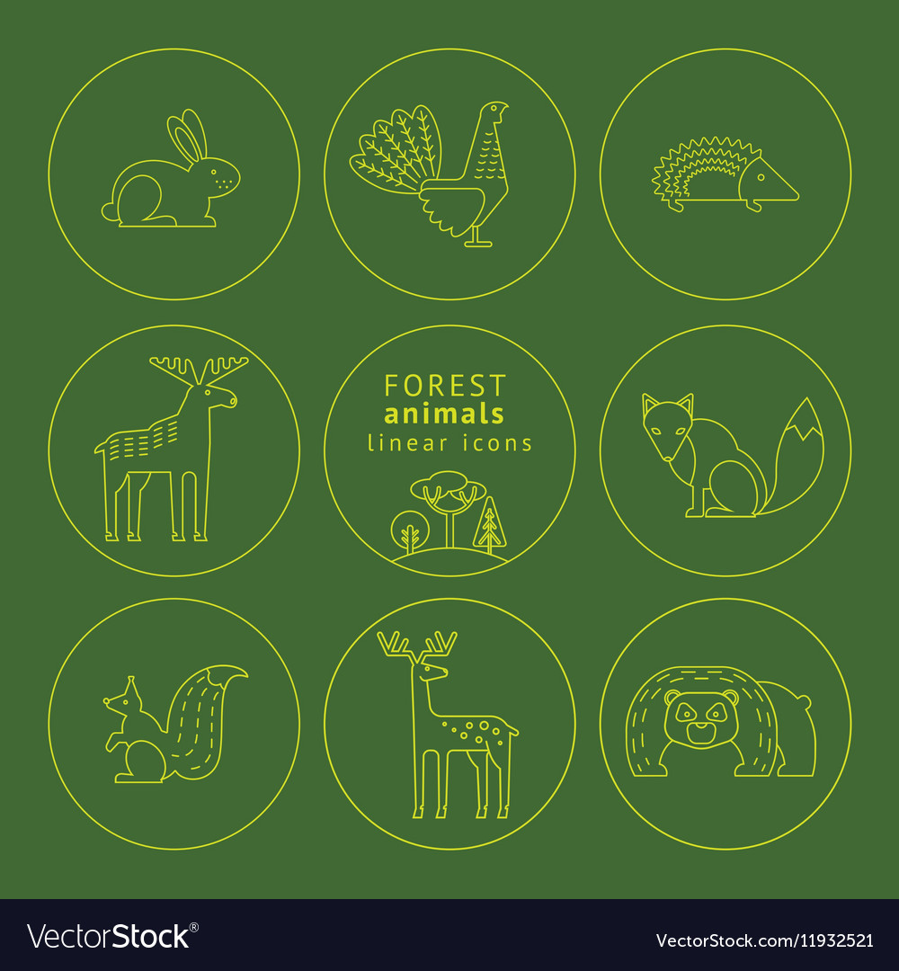 Linear icons of forest animals vector