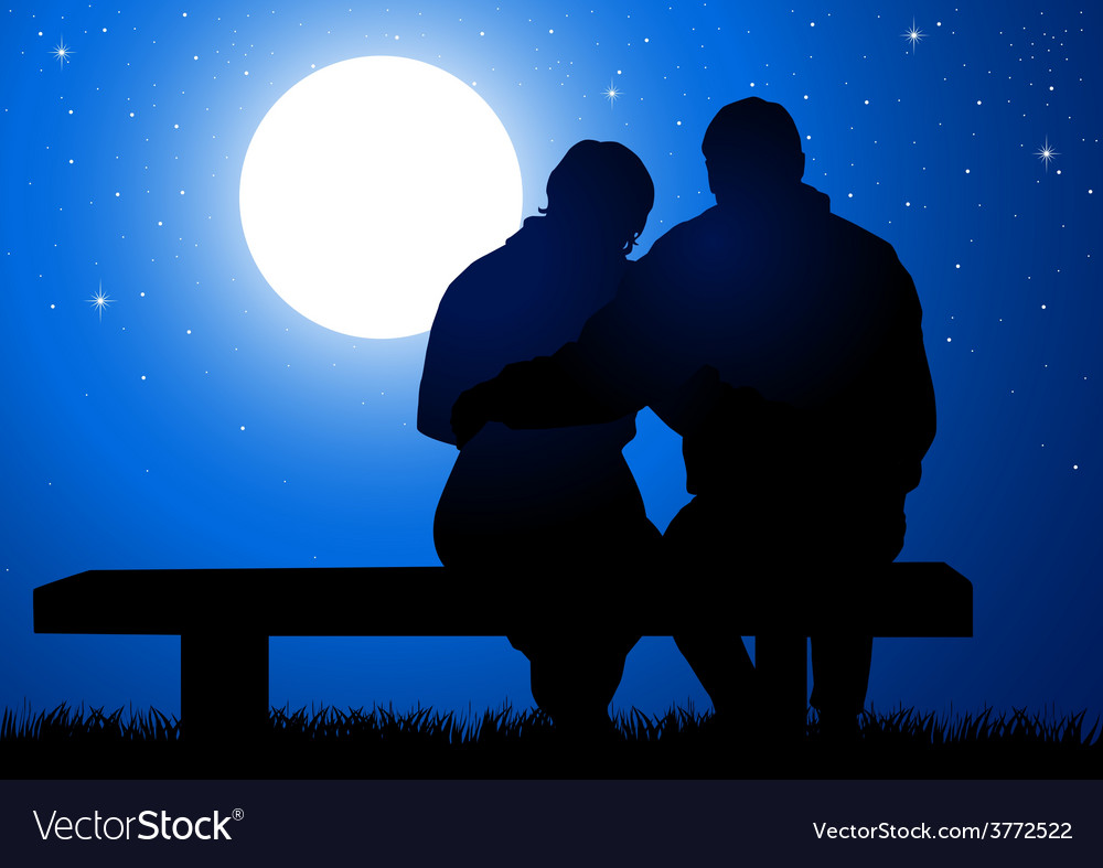 Romantic night vector