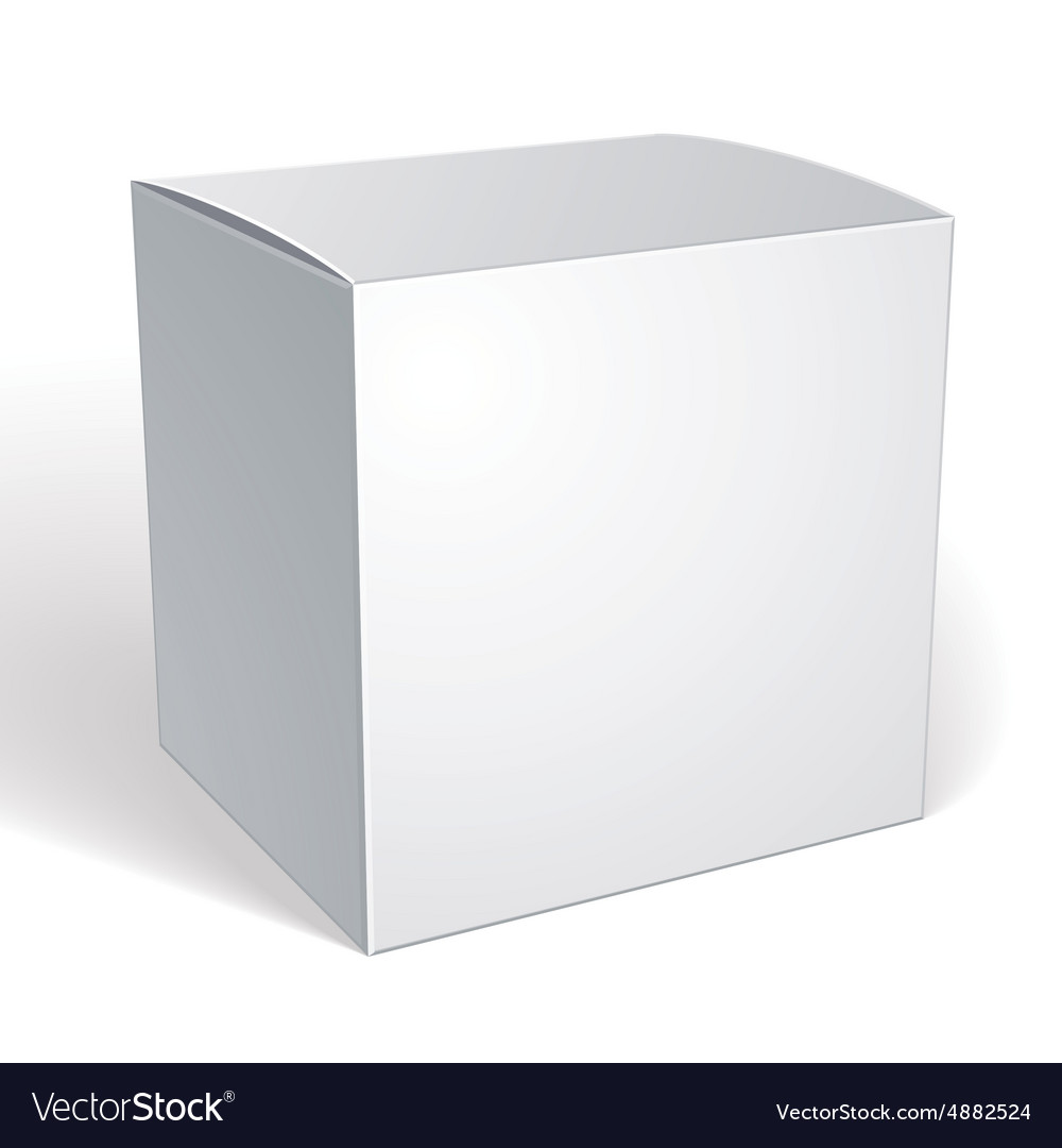 Blank box isolated on white background template vector