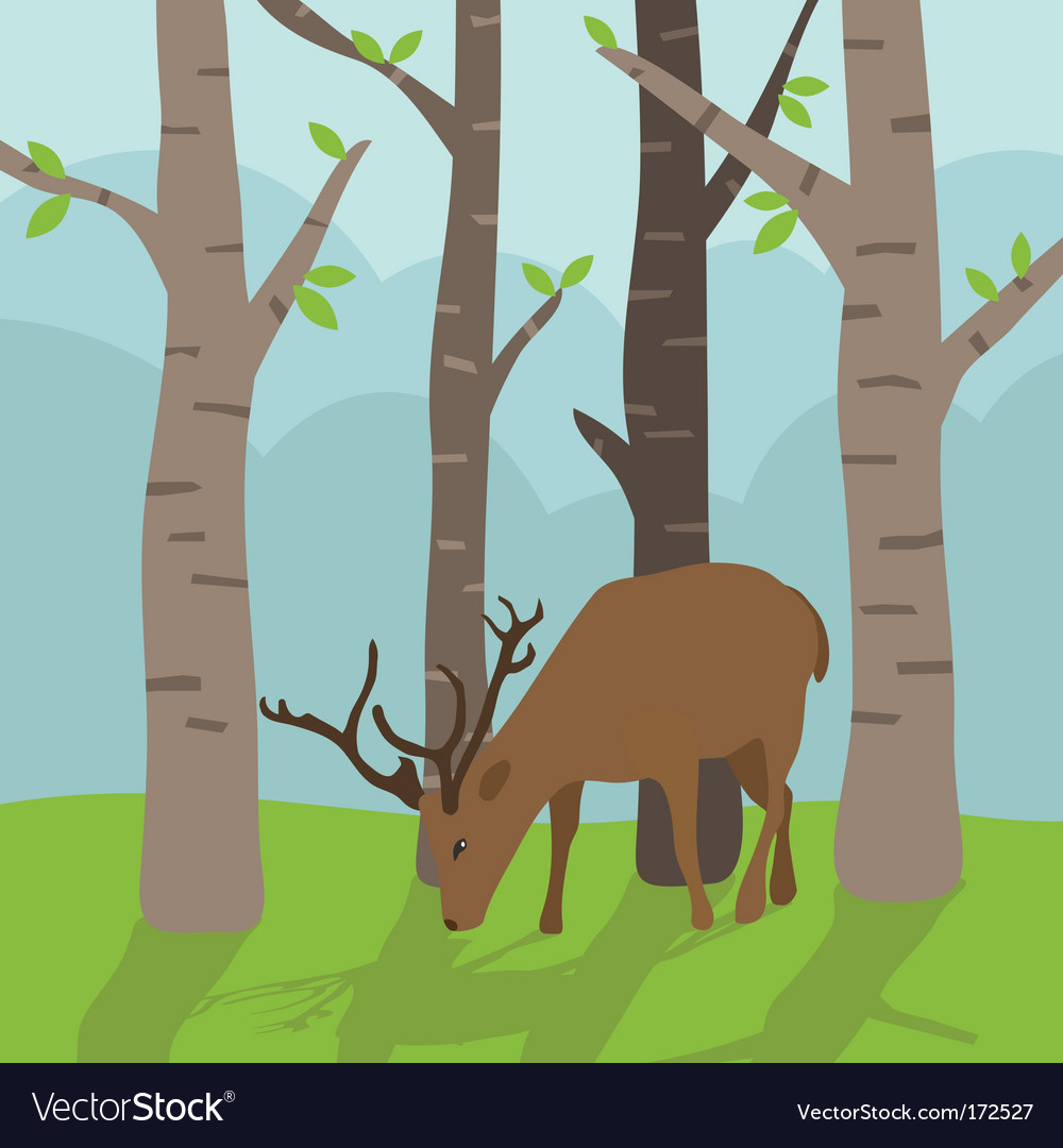 Deer in forest vector