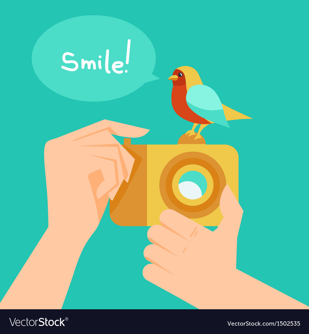Digital camera and cartoon bird vector