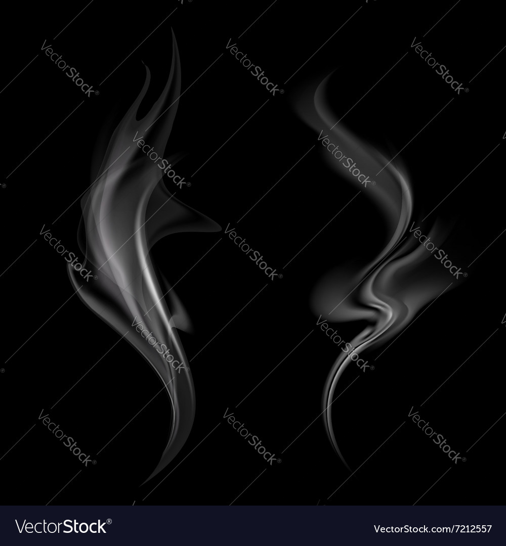 Gray smoke isolated on black background vector